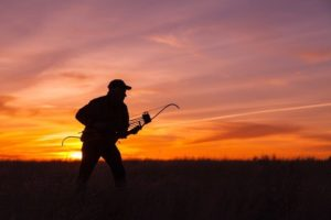 best-recurve-bow-for-hunting-in-the-wilderness