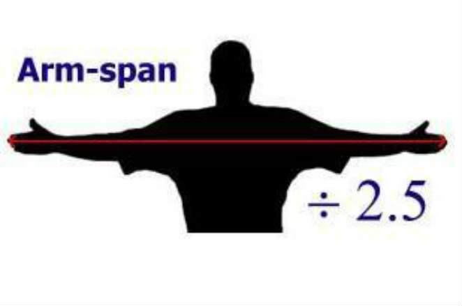recurve bow length arm span